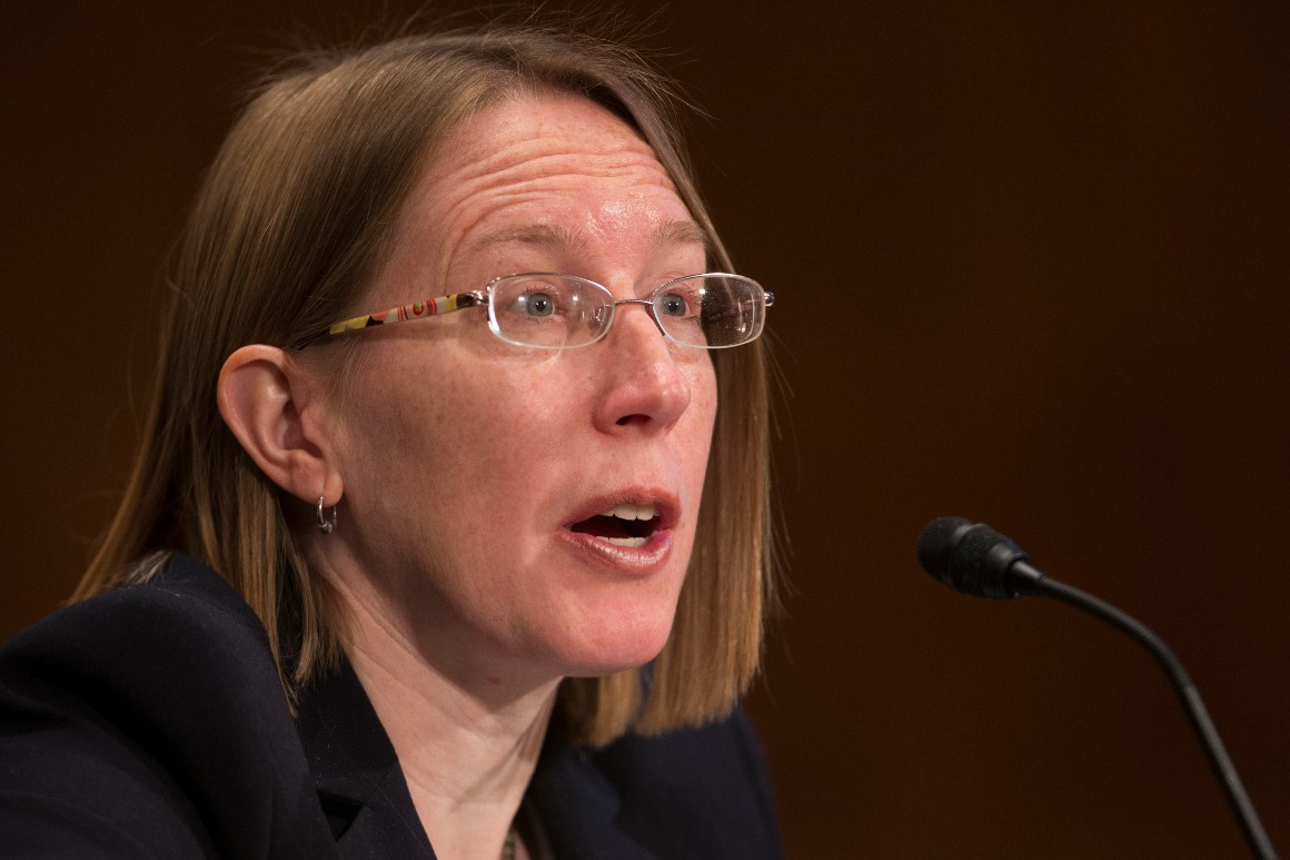 Hester Maria Peirce, a nominee to be a member of the Securities and Exchange Commission, testifies during a Senate Banking committee hearing.