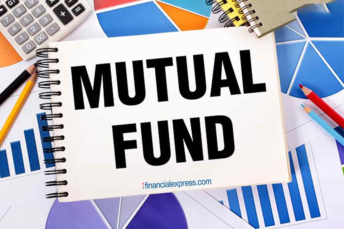 Mutual fund, MF, mutual fund investment, mutual fund portfolio, large cap fund, mid cap fund, multi cap fund, small cap fund, equity funds, number of funds to hold